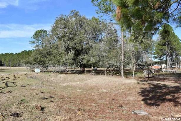 Farm, 2 Story,A Frame,Garden/Patio - Archer, FL (photo 4)