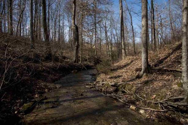 1630 Snake Creek Rd, Adolphus, KY - USA (photo 4)