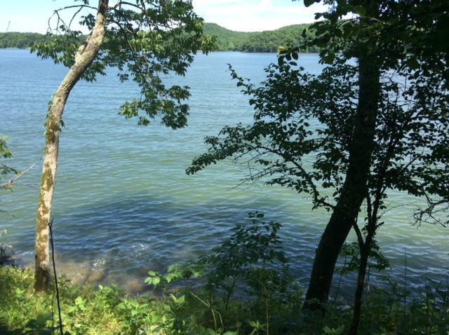 Lake Front,Single Family,Waterfront Access - Rockwood, TN (photo 1)