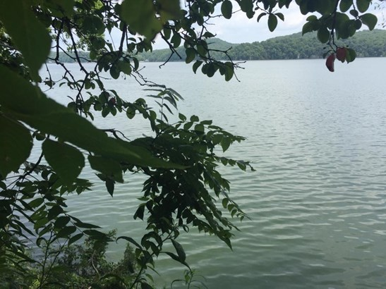 Lake Front,Single Family,Waterfront Access - Rockwood, TN (photo 3)