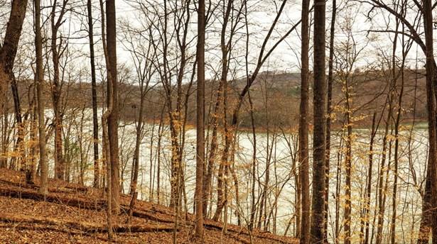 Lake Front,Single Family - Jacksboro, TN