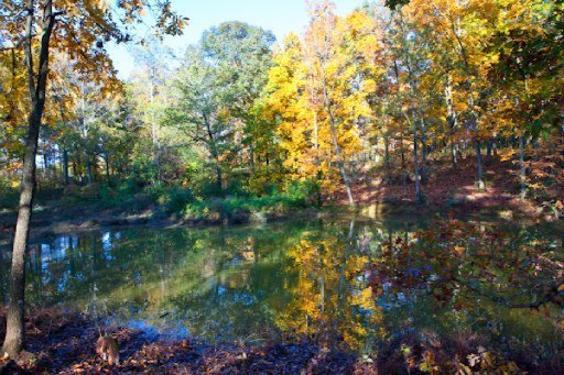 Single Family - Madisonville, TN (photo 3)