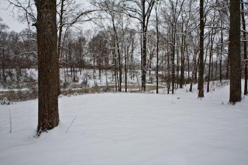 Single Family - Madisonville, TN (photo 5)