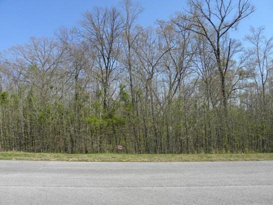 Single Family - Rockwood, TN (photo 1)