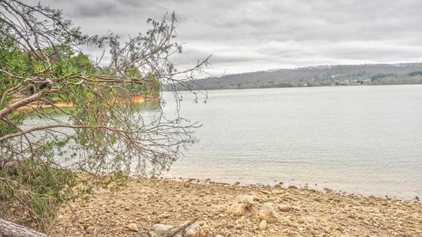 Lake Front,Single Family,Waterfront Access - Rockwood, TN