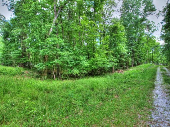 Lake Front,Single Family,Waterfront Access - Ten Mile, TN (photo 5)