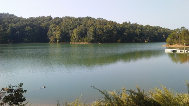 Lake Front,Rural,Single Family,Waterfront Access - Dandridge, TN (photo 1)