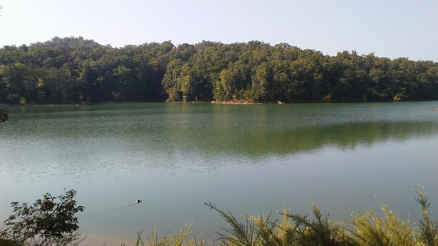 Lake Front,Rural,Single Family,Waterfront Access - Dandridge, TN (photo 2)