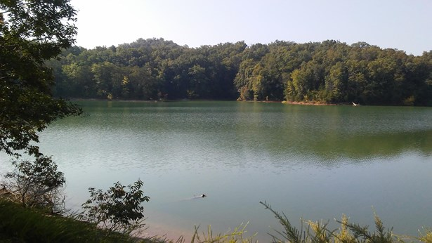 Lake Front,Rural,Single Family,Waterfront Access - Dandridge, TN (photo 3)