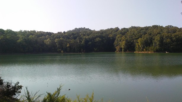 Lake Front,Rural,Single Family,Waterfront Access - Dandridge, TN (photo 4)