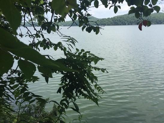 Lake Front,Single Family,Waterfront Access - Rockwood, TN (photo 3)