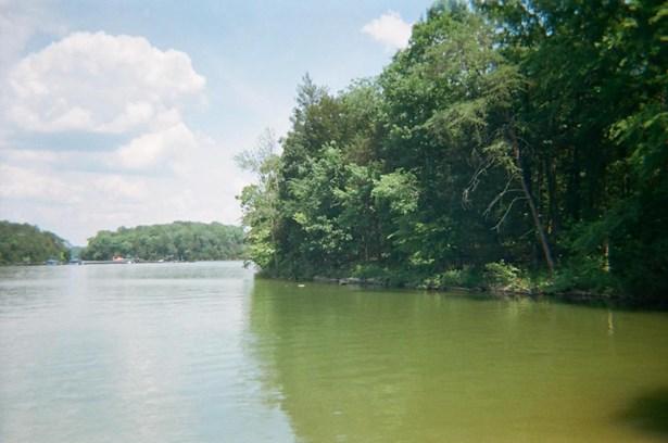 Lake Front,Single Family - Rockwood, TN (photo 5)