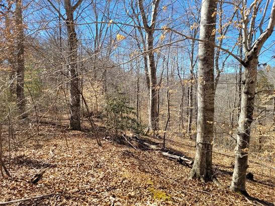 Single Family - New Tazewell, TN