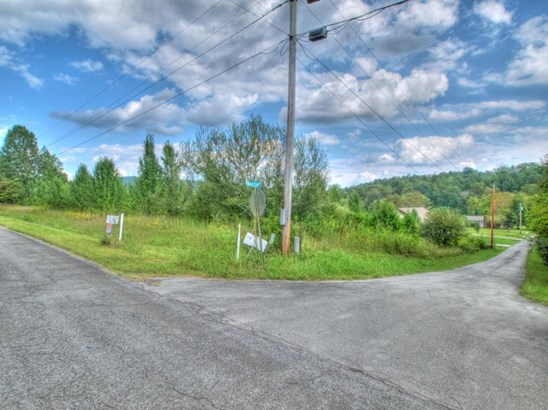 Commercial,Single Family - Kingston, TN (photo 3)