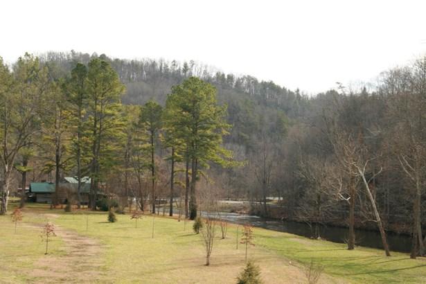 Single Family - Tellico Plains, TN (photo 3)