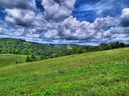 Single Family - New Tazewell, TN (photo 1)