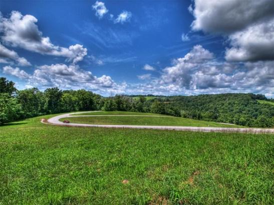 Single Family - New Tazewell, TN (photo 4)
