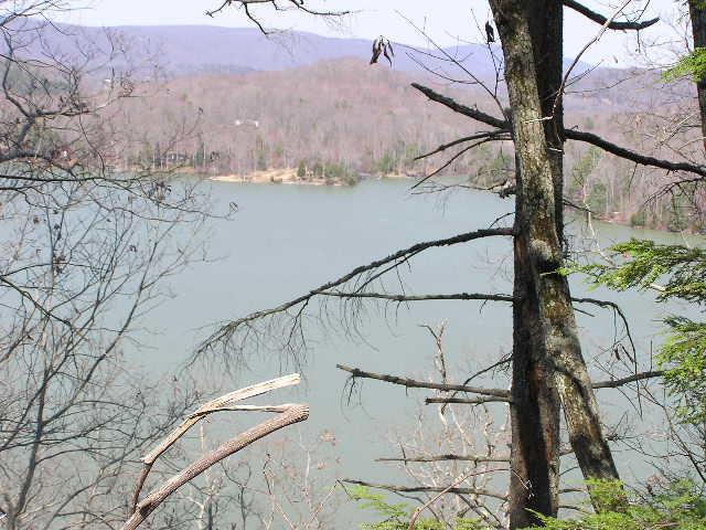 Lake Front,Single Family - Spring City, TN