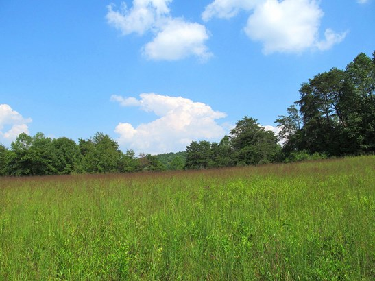 Farm,Recreational,Rural,Single Family,Waterfront Access - Andersonville, TN