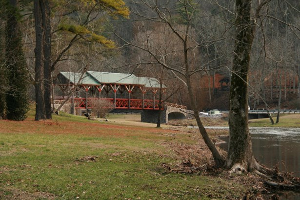 Single Family - Tellico Plains, TN (photo 5)