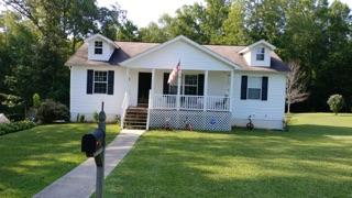 Basement Ranch,Residential, Traditional - Harriman, TN (photo 1)