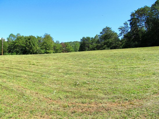 Farm,Recreational,Rural,Single Family,Waterfront Access - Andersonville, TN (photo 3)
