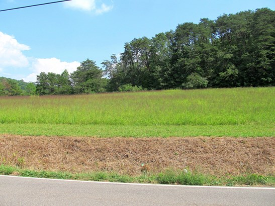 Farm,Recreational,Rural,Single Family,Waterfront Access - Andersonville, TN (photo 5)