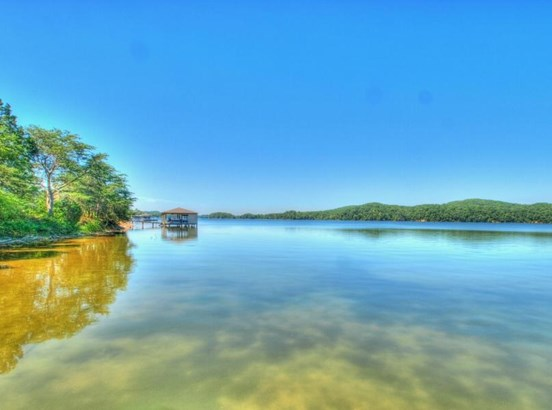 Lake Front,Single Family,Waterfront Access - Rockwood, TN (photo 4)