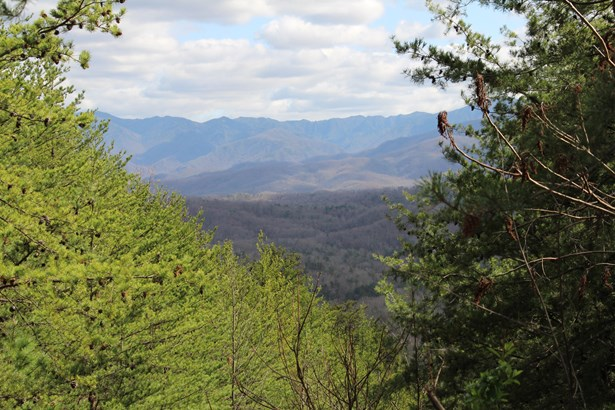 Other,Recreational,Rural,Single Family - Sevierville, TN