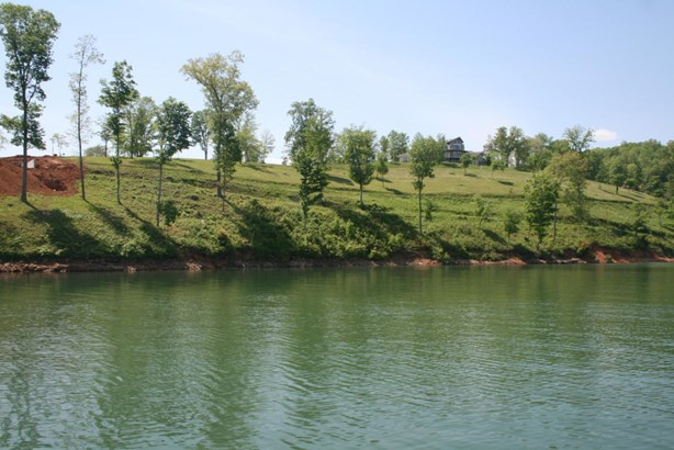 Lake Front,Single Family,Waterfront Access - Lafollette, TN (photo 5)