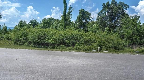 Single Family - Rockwood, TN (photo 2)
