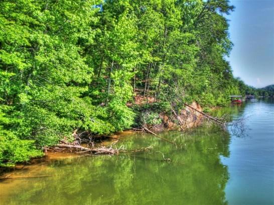 Lake Front,Single Family - Rockwood, TN (photo 3)