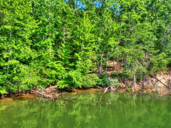 Lake Front,Single Family - Rockwood, TN (photo 4)