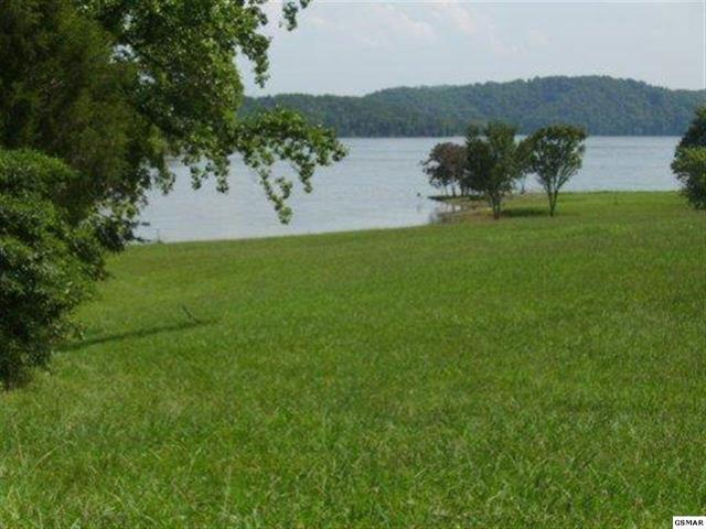 Lake Front,Single Family,Waterfront Access - Mooresburg, TN (photo 1)