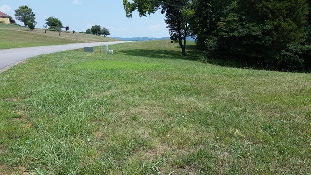 Lake Front,Single Family,Waterfront Access - Mooresburg, TN (photo 3)