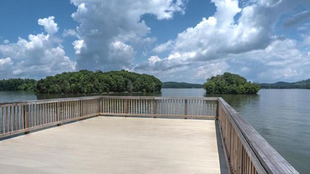 Lake Front,Single Family - Rockwood, TN (photo 1)