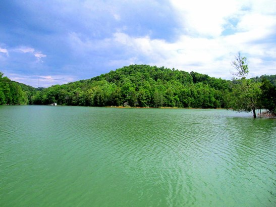 Lake Front,Rural - Speedwell, TN (photo 2)