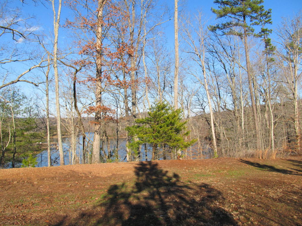 Lake Front,Recreational,Single Family,Waterfront Access - Rockwood, TN (photo 2)