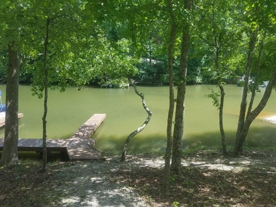 Single Family,Waterfront Access - Rockwood, TN (photo 4)