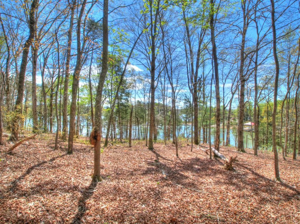 Lake Front,Single Family,Waterfront Access - Rockwood, TN (photo 2)