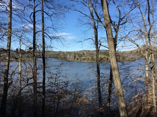 Lake Front,Single Family - Rockwood, TN (photo 2)