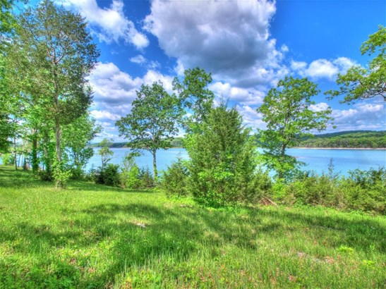 Lake Front,Single Family,Waterfront Access - Sharps Chapel, TN (photo 4)