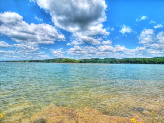 Lake Front,Single Family,Waterfront Access - Sharps Chapel, TN (photo 5)