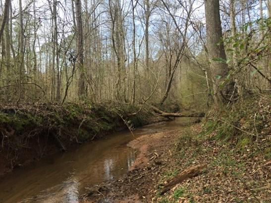 Land/Farm - Forsyth, GA (photo 2)