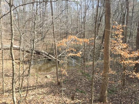 Land/Farm - Forsyth, GA (photo 4)