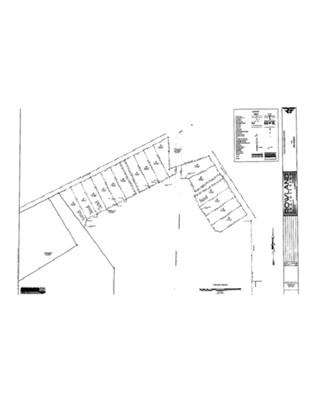 Residential Lot - Elko, GA