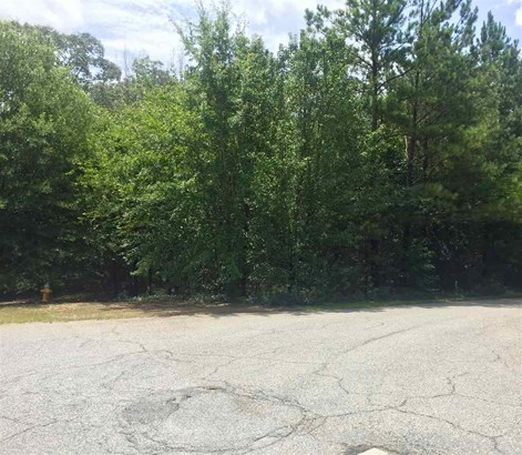 Residential Lot - Byron, GA (photo 2)