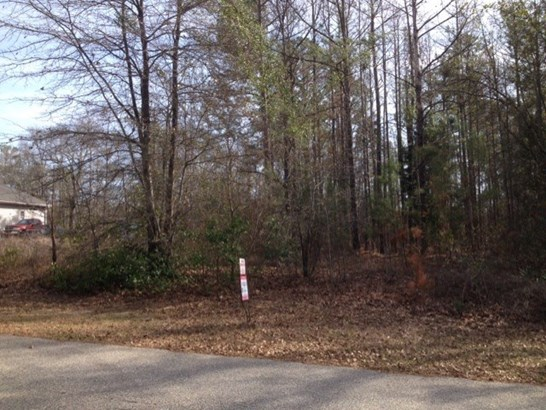 Residential Lot - Byron, GA (photo 1)