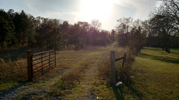 Land/Farm - Macon, GA (photo 5)