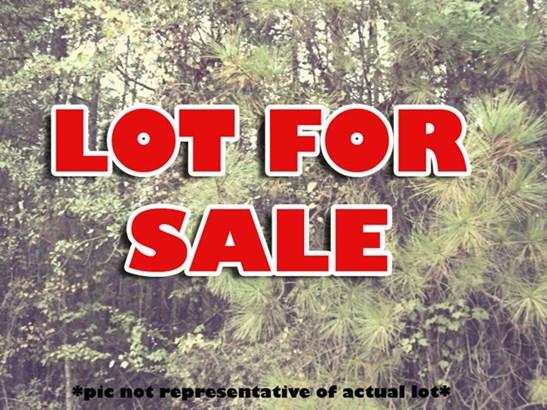 Land/Farm - Forsyth, GA (photo 1)